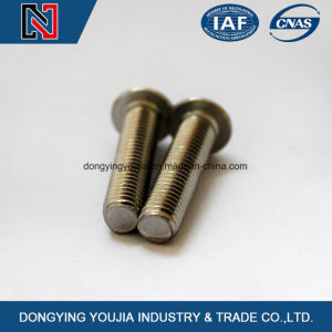 in Stock Carbon Steel Heaxagon Socket Round Head Screw pictures & photos