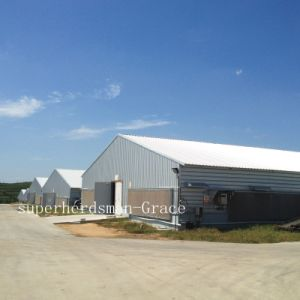 Hot Gavalnized Prefab Broiler House for Morder Farm pictures & photos