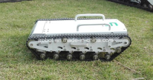 Mini Sized Tracked Toys (WT500MINI-WITH CAMERA) pictures & photos