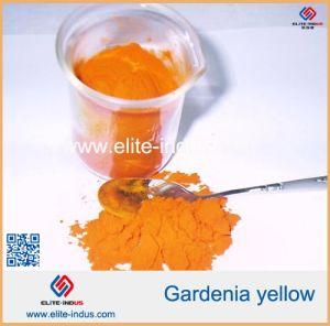 China Gardenia Yellow Gardenia Extract Powder Food Coloring ...