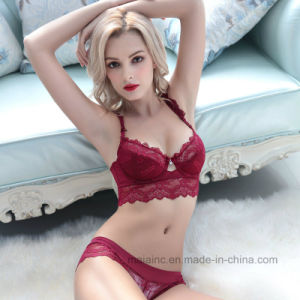 Sexy Push up Ladies Lace Panty and Bra in Low Price pictures & photos