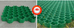 Plastic Grass Grid Grass Paver for Car Parking pictures & photos