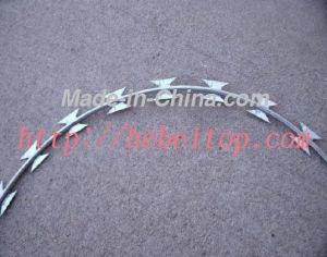 Concertina Coil Razor Wire (BTO-10)