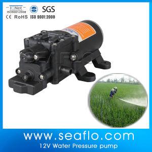 Pump for Fog Machine 12 Volt High Pressure Water Pump pictures & photos