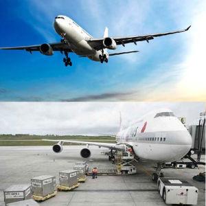 Hongkong Air Freight to Saudi Arabia pictures & photos