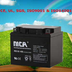 12V Rechargeable Battery Valve Regulated Lead Acid Battery 42ah pictures & photos