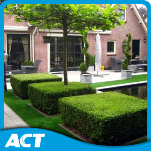 Artificial Landscape Garden Grass UV Resistant Excellent Supplier Made in China pictures & photos
