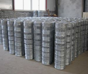 Hot Dipped Galvanized Hinge Joint Field Fence/Farm Fence/Cattle Fence pictures & photos