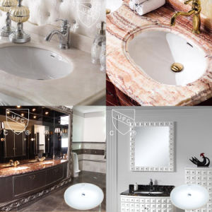 Oval Shape One Bowl Polished Wash Basin Price (SN023) pictures & photos