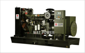150kw Deutz Biogas Generator Set Series pictures & photos