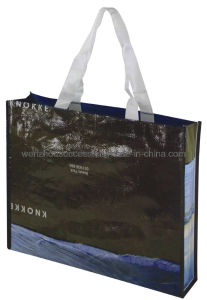 Non-Woven Bag (SG12-6S029) pictures & photos