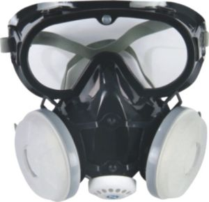 Light Full Face Dust Mask (9600B) pictures & photos