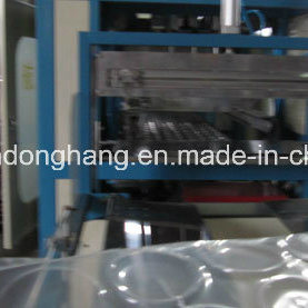 Ruian Donghang Lunch Boxes Vacuum Forming Machine pictures & photos