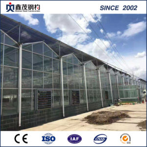 China Supplier Low Cost Glass Greenhouse for Vegetable/Garden pictures & photos