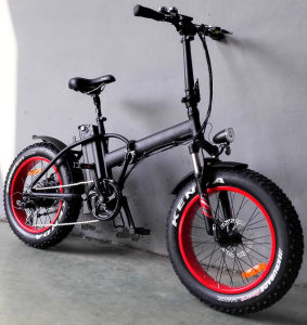 20 Inch Kenda Fat Tire Mountain Electric Folding Bike pictures & photos