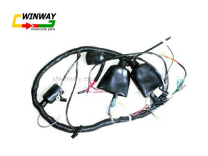 Ww-8806, Motorcycle Part, Motorcycle Wire Harness, pictures & photos
