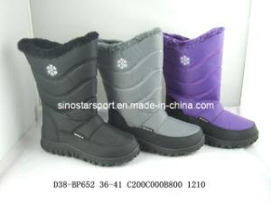 Woman Fashion Snow Boots (HLSB47)