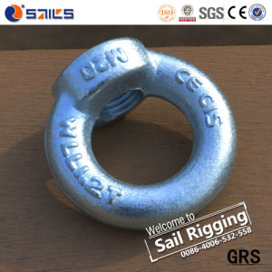 C15 E Forged Carbon Steel Lifting Eye Nut pictures & photos