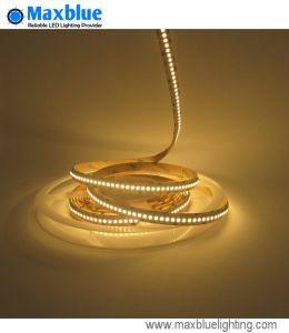 DC12V/DC24V SMD LED Strips 3528/ Flexible LED Strip Light pictures & photos