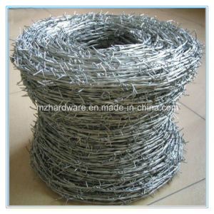 Electro Galvanized and PVC Coated Barbed Wire pictures & photos