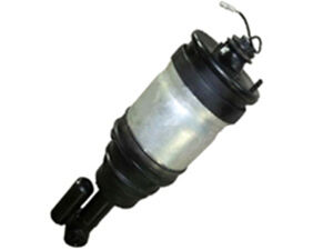 Rear Air Suspension Spring for Land Rover Range Rover pictures & photos
