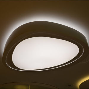 D560mm Modern Bedroom Dimmable LED Ceiling Lamp Lights in Garranty 2 Years pictures & photos