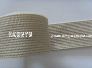 Factory Shipping Webbing and Band pictures & photos