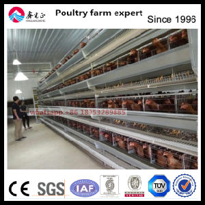 Chicken Farm Equipment Automatic H Type Chicken Cage pictures & photos
