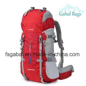Professional Outdoor Nylon Leisure Travel Camping Sports Hiking Pack Backpack pictures & photos