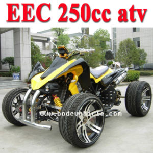 250c Racing Quad ATV Bike with EEC pictures & photos