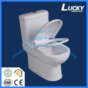 P-Trap 180mm Roughing-in Washdown Two-Piece Toilet for Sales Promotion pictures & photos