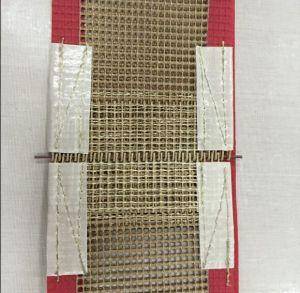 Teflon Mesh Tape, Teflon Mesh Tape pictures & photos