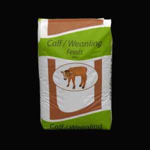 20kg 25kg 50kg Woven Polypropylene Kraft Paper Cement Valve Bag pictures & photos