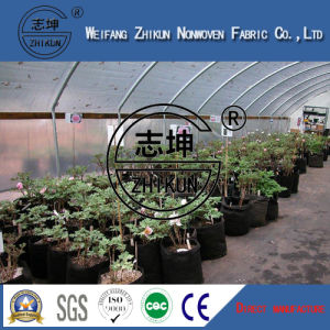 PP Nonwoven Fabric for Agriculture pictures & photos