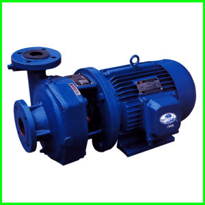 Small Centrifugal Pump with Electric Motor pictures & photos