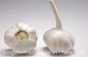 Exportting Standard Fresh White Garlic New Harvest in Jinxiang for Sell pictures & photos