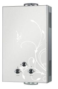 10L Gas Water Heater Flue Type
