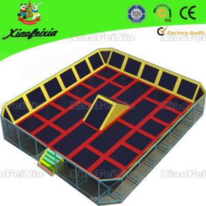 China Professional Trampoline Supplier (3021E) pictures & photos