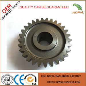 Gears Pinion / Cast Iron Gears for Gearbox