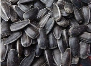 High Quality Sunflower Seeds Oil Grade pictures & photos