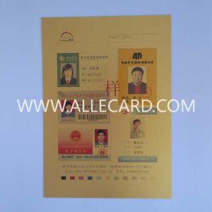 Golden Inkjet Printable PVC Sheet pictures & photos