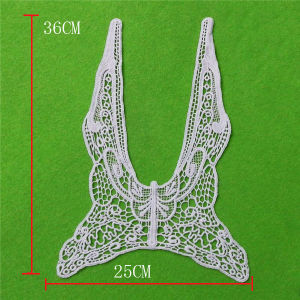 Popular Collar with Cotton Embroidery Lace (cn85) pictures & photos