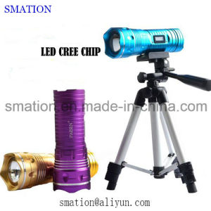 USB Rechargeable Fish UV Bright Camping Solar LED Torch Flashlight pictures & photos