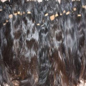 One Donator Single Drawn Ponytail Human Hair Bulk pictures & photos