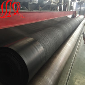 Textured HDPE Geomembrane Price pictures & photos