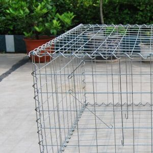 Heavy Zinc Welded Wire Mesh Gabion Wall pictures & photos