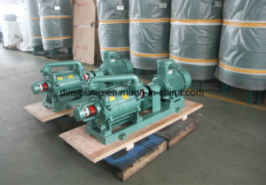 Dual Stage Liquid Ring Vacuum Pump for Oil Transformer pictures & photos