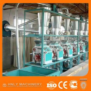 Professional Turn-Key Project Maize Flour Milling Plant pictures & photos