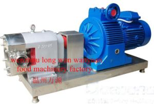 Stainless Steel Rotor Pump (ZB3A) pictures & photos