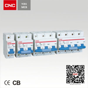 Mini Circuit Breaker YCB1-100(NC 100H) pictures & photos